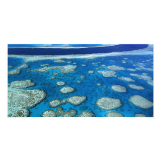 The Great Barrier Reef Photo Card