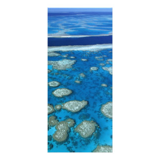 The Great Barrier Reef Rack Card