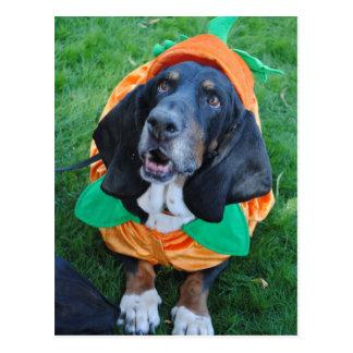 "The Great ""Basset Hound"" Pumpkin Postcard"