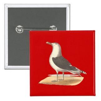 The Great Black-backed Gull(Larus marinus) Pins