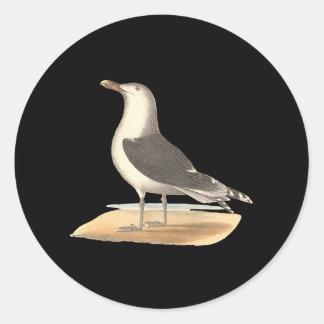 The Great Black-backed Gull(Larus marinus) Classic Round Sticker