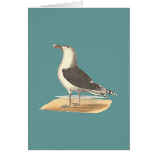 The Great Black-backed Gull(Larus marinus) Greeting Card