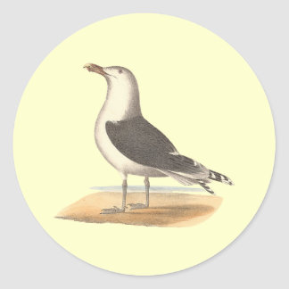 The Great Black-backed Gull(Larus marinus) Round Sticker