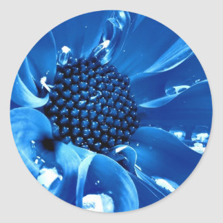 The great blue flower round stickers