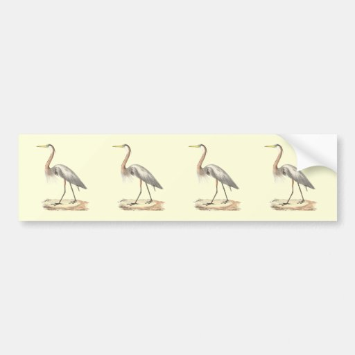 The Great Blue Heron  (Ardea herodias) Bumper Sticker