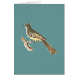 The Great-crested Kingbird(Tyrannus crinitus) Greeting Card