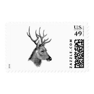The great deer buck stamps