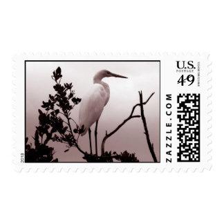 The Great Egret, Florida Keys Postage Stamp
