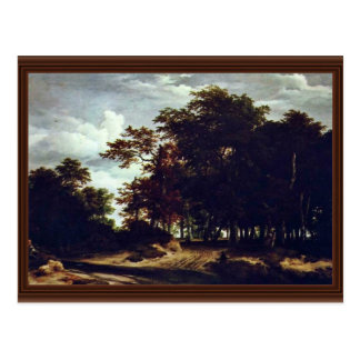 The Great Forest By Ruisdael Jacob Isaaksz. Van (B Postcard