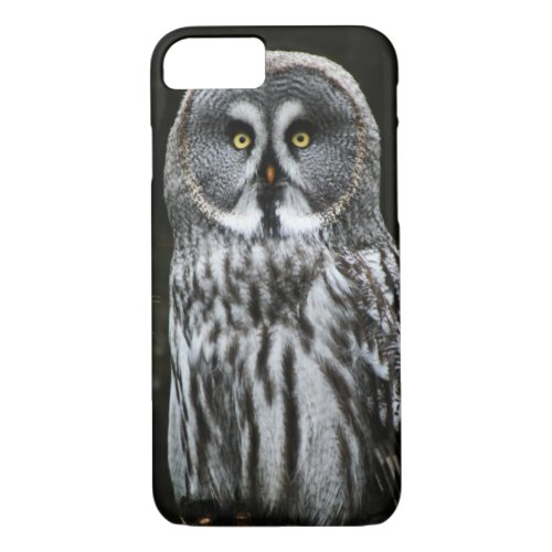 The Great Grey Owl iph arc Phone Case