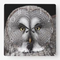 The great grey owl square wall clock