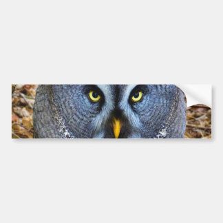 The Great Grey Owl Strix Nebulosa Lapland Owl Bumper Sticker