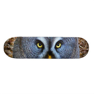 The Great Grey Owl Strix Nebulosa Lapland Owl Skate Board Decks