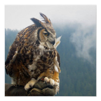 The Great Horned Owl Poster