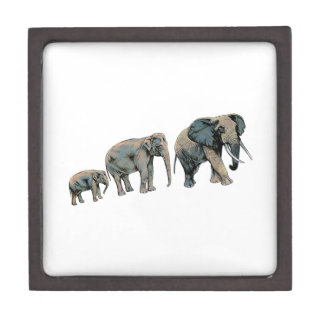 THE GREAT MIGRATION JEWELRY BOX