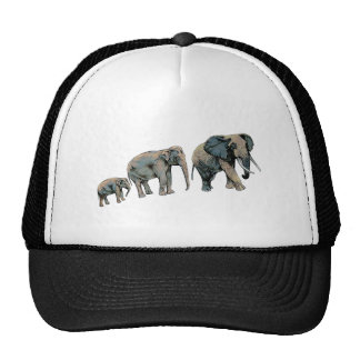 THE GREAT MIGRATION TRUCKER HAT