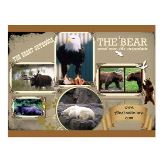 The Great Outdoors in Alaska Postcard