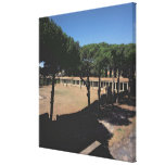 The Great Palaestra Gallery Wrapped Canvas