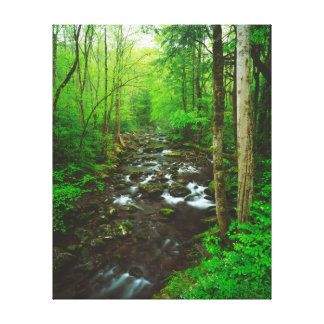 The Great Smoky Mountains Stretched Canvas Prints
