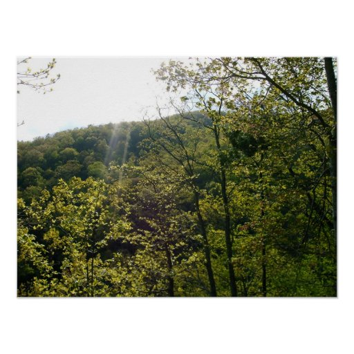 THE GREAT SMOKY MOUNTAINS POSTERS