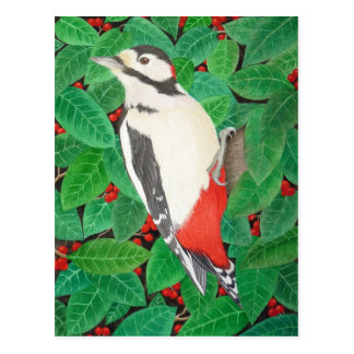 The Great Spotted Woodpecker Postcard
