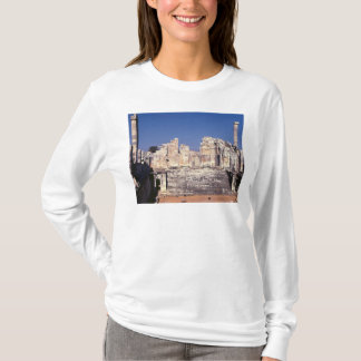 The Great Staircase of the Temple of Apollo T-Shirt