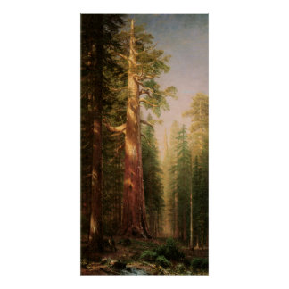 The Great Trees, by Albert Bierstadt Posters