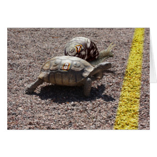 The Great Turtle and Snail Race Card