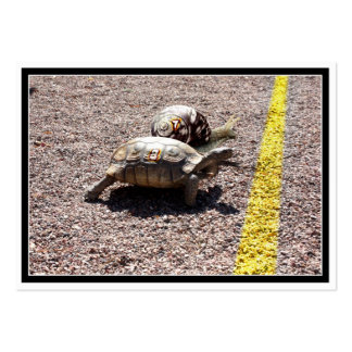 The Great Turtle & Snail Race Business Card