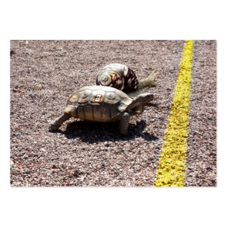 The Great Turtle & Snail Race Business Card Templates