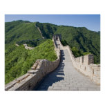 The Great Wall of China in Beijing, China Poster