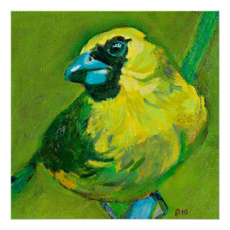 The Green Bird With The Blue Beak Poster