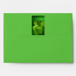 The Green Clover - Envelope