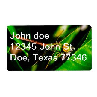 The Green Dragon Label