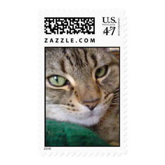 The Green-Eyed Cat Postage