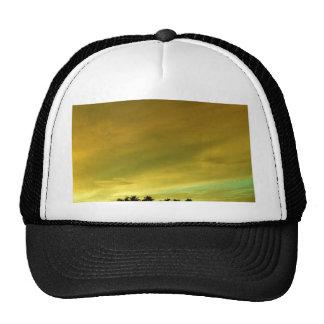 The Green flash 1 Mesh Hats