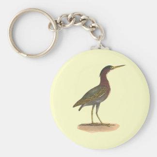 The Green Heron, or Poke (Ardea virescens) Keychains