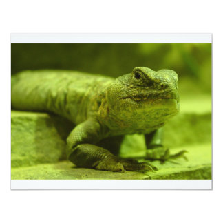 The Green Lizard Card