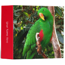 """The Green Orator"" Eclectus Parrot Binder"