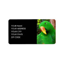 """The Green Orator"" Eclectus Parrot Label"