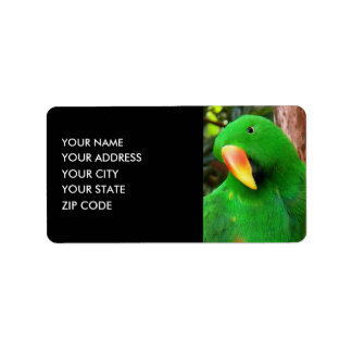 """""""The Green Orator"""" Eclectus Parrot Label"""