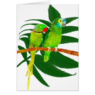 The Green Parrots Gifts Card
