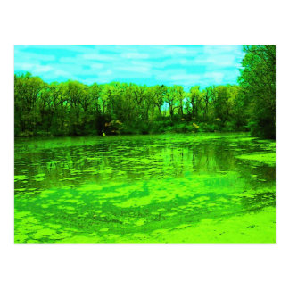the Green Pond Postcard