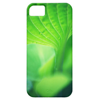 The green room funda para iPhone SE/5/5s
