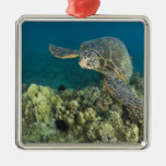 The Green Sea Turtle, (Chelonia mydas), is the 2 Metal Ornament