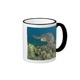 The Green Sea Turtle, (Chelonia mydas), is the 2 Ringer Mug