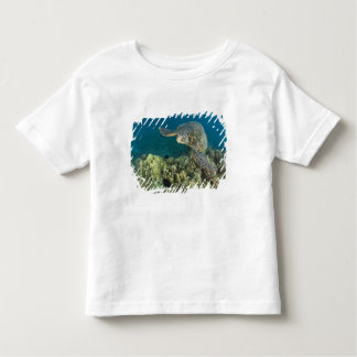 The Green Sea Turtle, (Chelonia mydas), is the 2 T Shirt