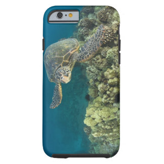 The Green Sea Turtle, (Chelonia mydas), is the 2 Tough iPhone 6 Case