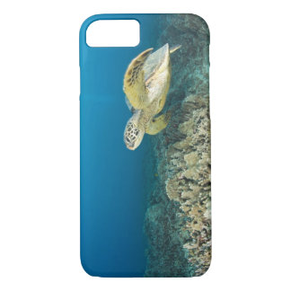 The Green Sea Turtle, (Chelonia mydas), is the 3 iPhone 8/7 Case