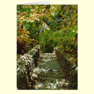 The Green Stairway Greeting Card